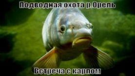 """Подводная охота """"Встреча с карпом"""" в Днепропетровской области"""