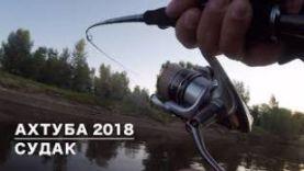 Рыбалка в Астрахани 2018. Судак!