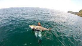 Подводная охота в Таиланде