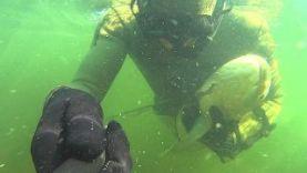 Подводная охота на 15,5 кг амура на Волге, Волгоград 2015