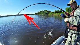 Рыбалка на сома с квоком – вот это мы порыбачили!