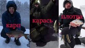 Ловля больших Карпов и Карасей в январе на дикаре Зимняя рыбалка на фидер 2018