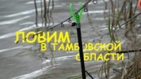 Рыбалка фидер и донку на пруду Старое Козьмодемьяновское, Тамбовской области