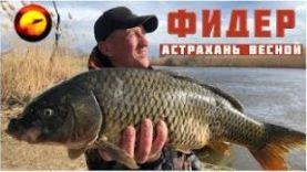Рыбалка в Астрахани, ловля на воблы на фидер, Нижняя Волга весной