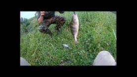 Ловля щуки, окуня на спиннинг, река Ора, Новосибирский р-он.