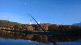 Рыбалка в городе. Тула, Центральный парк.