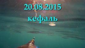 Подводная охота на кефаль, ЮБК