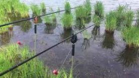 Рыбалка на платнике весной, Рязань