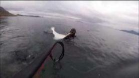 Подводная охота в Норвегии 2015 , 15 кг палтус