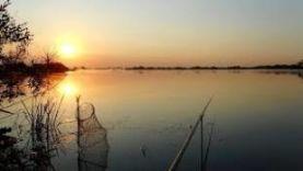 Летняя рыбалка на подмосковном озере с ночёвкой.