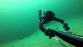 Подводная охота в Норвегии, Берген 2015
