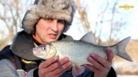ЯЗЬ: Рыбалка по льду ранней весной на мормышку в Тамбовской области.