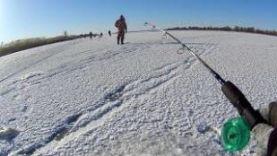 Ловля судака зимой на балансир, в Астрахани ,2018