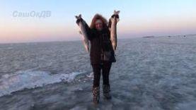 ЛОВЛЯ ЩУКИ: ЗИМА, ОЗЕРО ХАНКА, ЩУКА НА ЖЕРЛИЦЫ(НА ФЛАЖКИ) WINTER FISHING FOR PIKE, LAKE KHANKA
