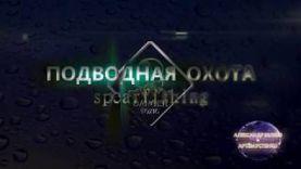 Подводная охота -рыба шар
