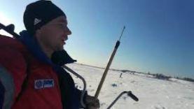 Рыбалка в Пермском крае, судак на 2 кг