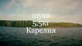 Щука 5,5кг – Карелия