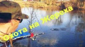 Весенняя рыбалка по жереху в Орловской области!!