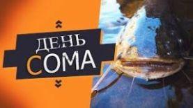 РЫБАЛКА НА СОМОВ: ✦RUSSIAN FISHING 4 – РУССКАЯ РЫБАЛКА 4✦ ДЕНЬ СОМА ГДЕ ОН РОЗЫГРЫШ ФИДЕРА НА 19.5КГ НА 30ЛАЙКОВ