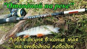 Ловля окуня на отводной поводок в конце мая Отчет с рыбалки