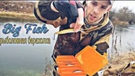Рыбалка на спиннинг в Орловской области за три дня до нового года!