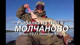 Рыбалка на Оби в Молчаново