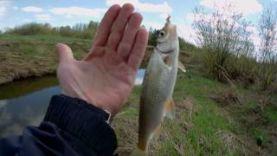 Ловля весной на поплавочную удочку на малой реке