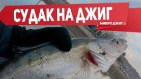 ЛОВЛЯ СУДАКА:ЛОВЛЯ СУДАКА НА ДЖИГ МИКРОДЖИГ ВЕСНОЙ РЫБАЛКА С FISHINGSIB 2019 2017