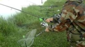 Карп на корчагинце, Россия Мордовия г Маранск, поклевка на сигнализатор рыбалка