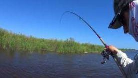 Трофейная щука, рыбалка на лодке Максима Легалова