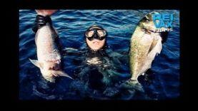 Подводная охота- небольшая подборка динамичных моментов